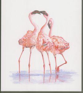 Flamingos, Watercolour